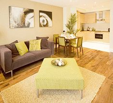 Helsinki 1960 cream lime green brown modern next style for Brown green and cream living room ideas