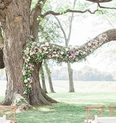 For a ceremony backdrop that is totally natural, why not make the most of a tree branch, decorating with flowers to frame your perfect wedding ceremony? We LOVE it!