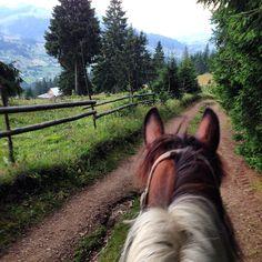Riding in Maramures, Romania Romania, Charms, Horses, Simple, Nature, Travel, Animals, Inspiration, Biblical Inspiration