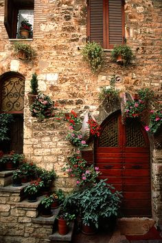 'Assisi Doorway' Perugia, Umbria, Italy (photo by Bart Edson) Cool Doors, Unique Doors, The Doors, Windows And Doors, Arched Doors, Door Knockers, Doorway, Belle Photo, Stairways