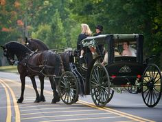 It's always been a dream of mine to either show up sidesaddle on my wedding day or via a horse drawn carriage. :)