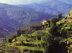 mont Aigoual et mont Lozère, Languedoc-Roussillon