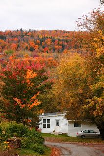 My home in the fall