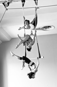 Image result for trio trapeze