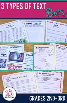 Second and third grade teachers this Bats Reading has 3 types of text! One product with Informational Text, a Fictional Story, and a Fictional Poem. Practice reading comprehension skills such as close reading and answering text dependent questions, summarizing, annotating thoughts and much more!