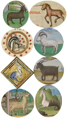 Intelligent & curious Capricorns (horned goats) from medieval calendars include sea-goats & unicorn