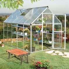 Darby Home Co Shearson 6.1 Ft. W X 10.2 Ft. D Greenhouse