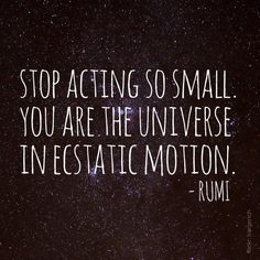 You are not a speck in the universe, you are the universe in a single soul.