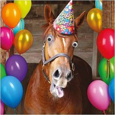 Funny Horse Birthday Card Goggly Moving Eyes, Party Hat & balloons Greeting Card