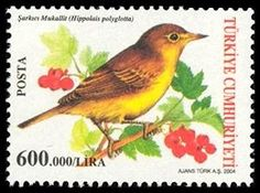 Hippolais polyglotia bird stamp, issued on July 23, 2004.    Sylvia rueppelli bird stamp, issued on July 23, 2004.   Turkey birds cover, pos...