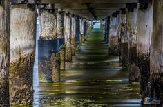 Long Exposure Under Griffin Gully Jetty Geelong 01/01/2016 #livelovegeelong #perspective #lines #geelong #longexposure  #destinationgeelong #geelongphotographer #westernbeach @visitgeelongbellarine @lovecentralgeelong @destinationgeelong @geelong_mayor @geelongcoast @geelong_in_pictures @geelongcity @snippets_of_geelong by miclarkins_photography http://ift.tt/1JtS0vo