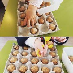 Sur le blog je vous montre les deux manières que jai présenté cette activité de boite à œuf à mes deux loulous( 14 mois et 2 ans). le lien est dans ma bio. #motricitefines#montessori#boiteaoeufs##noix#blog#lesptitspetons#assistantematernelleagréée