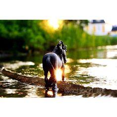 It thundered last night⚡️ An it rained all day •••••••• Det åskade igår kväll⚡️ Och regnade hela dagen idag #schleich #modelhorse
