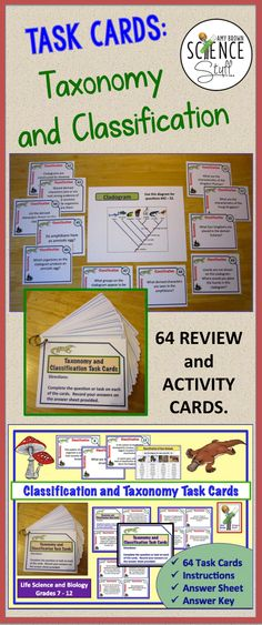 A set of 64 task cards on classification and taxonomy. Great for review, reinforcement, tutoring, and student group work.