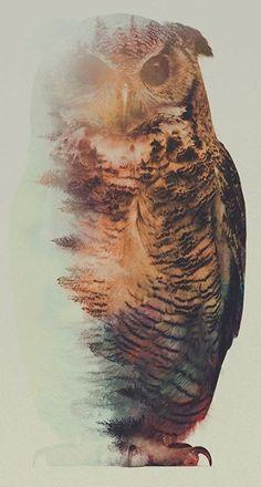 Portraits d'animaux en double exposition Portraits En Double Exposition, Tatoo Art, Owl Canvas, Canvas Art, Double Exposure Photography, Norwegian Wood, Owl Art, Animal Tattoos, Pet Portraits