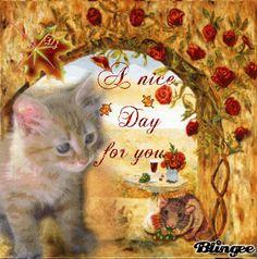 ~ For you my dear friend ~