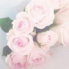 Pinterest: ♡Ashley♡