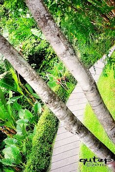 Maya Ubud resort and spa Bali Indonesia
