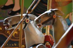 Carousel Museum, Pruning Shears, Garden Tools, Gardening Scissors, Yard Tools