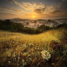 Ранним утром #макеевка #рассвет #трава #туман#макеевка #рассвет #трава #туман Photographer: Виталий Башкатов
