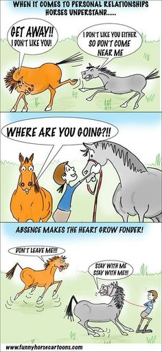 Who has seen this cartoon in real life? The Parelli Program teaches people how to start a relationship with your horse that will develop into a partnership. Allow me to blow your socks off at Pat Parelli proudly presents: Future of Horsemanship Tour, coming to a city near you in 2014! Check out Geneviève Benoit, Licensed #Parelli 3 Star Instructor at www.vifargent.com
