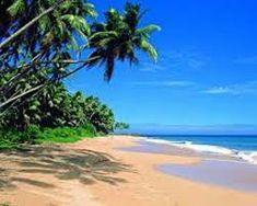 Sri Lanka is nuzzled off the Indian coast in the Bengal Sea and is famous for its lush fauna and flora and astonishing beaches.