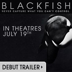 Blackfish the movie Released July 19 2013