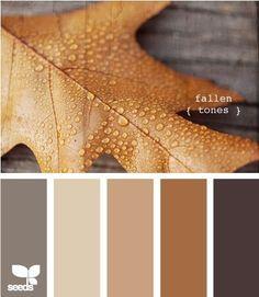 paleta de colores para el hogar