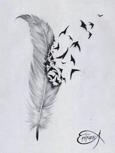 Imagen de bird, feather, and drawing