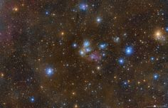 In this beautiful celestial still life composed with a cosmic brush, dusty nebula NGC 2170 shines near the image center. Reflecting the light of nearby hot stars, NGC 2170 is joined by other bluish reflection nebulae, a red emission region, many dark absorption nebulae, and a backdrop of colorful stars.