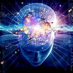 The human brain has a unique way of developing itself. A child's brain develops in phases. During each phase, the basic foundation for a particular brain function – such as visual perception,. Brain Facts, Dna Facts, Pineal Gland, Conscience, Quantum Physics, Wtf Fun Facts, Random Facts, Awesome Facts, Fascinating Facts