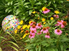 Gazing Ball with Cone Flower