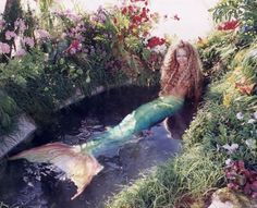 """Add a Mermaid to bring the fantasy """"under the sea"""" theme to life. Mermaid Man, Mermaid Cove, Mermaid Lagoon, Mermaid Barbie, Fantasy Mermaids, Real Mermaids, Mermaids And Mermen, Fantasy Creatures, Mythical Creatures"""