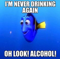 When I just said I'll stop drinking alcohol... and alcohol comes to see me. 😂 Funny Running Memes, Running Humor, Running Quotes, Running Motivation, Running Training, Fitness Motivation, Marathon Motivation, Track Quotes, Exercise Motivation