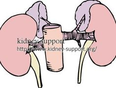 my doctor told me that my kidneys get to 14% in IgA Nephropathy. What happens with this diagnosis?
