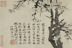 Shitao 石濤 (1642–1707), Plum Blossoms, ca. 1705–07, Qing dynasty (1644–1912). Album leaf; ink on paper. Painting: 20.2 x 29.7 cm. (7 15/16 x 11 11/16 in.). Leaf: 59.6 x 36.4 cm. (23 7/16 x 14 5/16 in.). Gift of the Arthur M. Sackler Foundation for The Arthur M. Sackler Collection. y1967-15 b. Princeton University Art Museum.