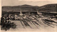 Borovszky - Magyarország vármegyéi és városai