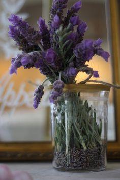 My inner landscape....lavender