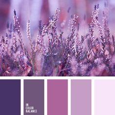 colour combination, colour combination in interior, dark purple, light purple, monochrome colour palette, monochrome lilac colour palette, monochrome violet colour palette, pale lilac, pink and lilac, purple, rich lilac, rich purple,