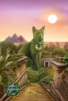 The Topiary Cat in Egypt. (by Richard Saunders).