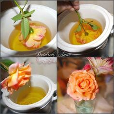 How to preserve flowers. Dip them in your old wax