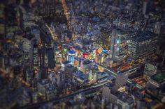 ちょっと写真的な表現をすると「彩度が密集している」感じがする。ここまで彩り溢れた建物が一箇所に集中しているのも日本でこの場所くらいでしょうね(^^)