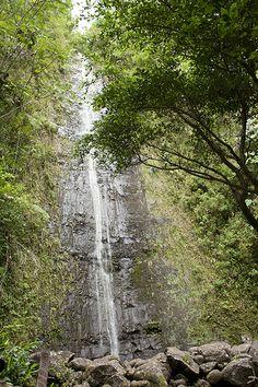 Oahu Manoa Waterfall Hike ☼ Off the beaten path things to do in Oahu, Hawaii http://www.thewondermap.com/things-to-do-in-oahu-hawaii/