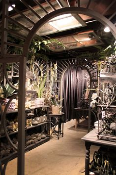 Roger's Gardens Halloween display-goth up your greenhouse?