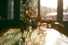 Dias de sol y primavera