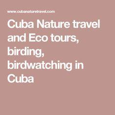 Cuba Nature travel and Eco tours, birding, birdwatching in Cuba