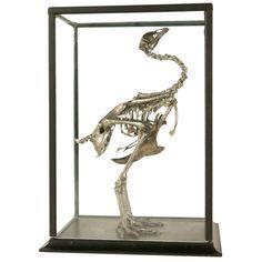 Antiqued Silver Leaf Crested Chicken (Sierkip) Skeleton