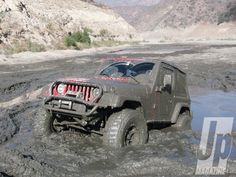 Jeeps Love playing in the mud.