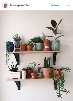 Indoor Plant Decor ideas are fun for people of all ages. You don't have to have a huge garden or your Indoor Plant Decor Ideas are perfect for small garden arrangements. There are many different plants that are suitable for… Continue Reading → Interior Design Minimalist, Decoration Plante, Flowers Decoration, Plant Shelves, Shelves With Plants, Cactus Y Suculentas, Plant Decor, Home Decor With Plants, Green Home Decor