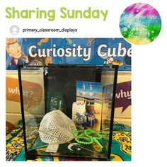 "Tishylishy on Instagram: ""How incredible does @primary_classroom_displays Curiosity Cube look 😍 _ #sharingSunday #tishylishy"" Primary Classroom Displays, School Displays, Curiosity Approach Eyfs, Curiosity Box, Word Wall Headers, British Values, Reggio Emilia Approach, Continuous Provision, List Of Skills"